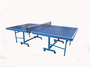 Nittaku Table (N-18) (For Local Market Only)